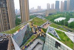 - It is believed that sponge city policy will give a strong boost to the green roof industries across China
